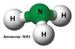 Atomic Structure of Ammonia