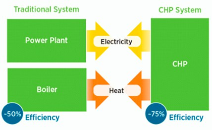 Fig 2: Process Flow Diagram of a CHP System